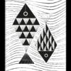 Poster Vissen zwart wit